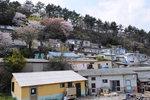산복도로 리포트 <3-13> 산복도로에 살다:생태공동체의 꿈, 물만골