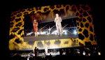 김동호의 세계 영화제 기행 <32> 스위스 로카르노영화제