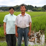 심우현의 규슈 문화리포트 <9> 후루노 박사의 오리농법과 봉하마을의 인연