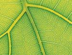 미래 에너지 수소 생산·저장 기술 높여라