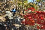 근교산&그너머 <798> 산청 웅석봉 단풍산행