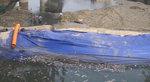 동천 재생 4.0 부산의 미래를 흐르게 하자 <2-3> 물길 되찾기- 다양한 수질 개선 시도들