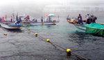 해운대해수욕장에 해파리 차단망 설치