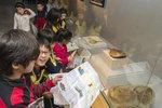 화석 관찰에 푹 빠진 초등생들