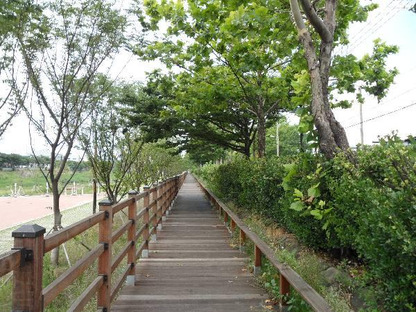 친환경 생태공원으로 변신한 장림유수지 '썰렁'