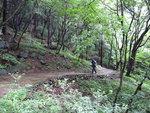 근교산&그너머 <890> 부산 서구종단트레킹숲길(구덕꽃마을~모지포)
