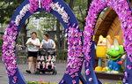 시민공원 전국 무궁화축제