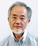 노벨생리의학상 일본인 2년 연속 수상