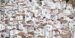 """""""내년도 주택매매가 큰 변동 없을 것…전세가도 미미한 상승"""""""
