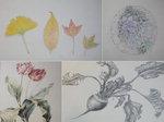 손끝에서 활짝 핀 식물들, 메마른 일상을 치유하다