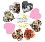 시인 최원준의 부산탐식프로젝트 <41> 가덕 굴의 맛