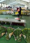 화훼농가 소비한파 직격탄
