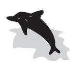 [도청도설] 돌고래의 신호