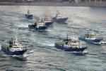 [영상] 대형선망수협 바닷모래 채취 반대 해상 시위