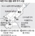 김정남 암살 독극물은 화학무기용 VX