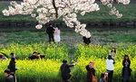 [포토에세이] 온천천의 봄