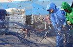기장 멸치 축제 개막...개막식에 정세균 국회의장 참석