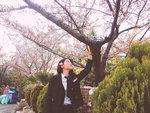 학창시절 추억담은 봄꽃 사진전