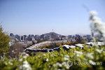 〈오늘날씨〉 전국 맑지만 일교차 주의…강원 오후 소나기(28일)