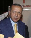 에르도안 터키 대통령, 여당 대표 복귀