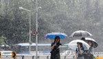 〈오늘날씨〉 충청·전라 내륙 소나기...전국 맑다가 구름(16일)