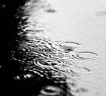 [부산날씨] 오후 늦게 빗방울 … 해 질 때쯤 그칠 듯