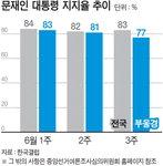 내년 PK 지방선거 최대 변수는 '문 대통령 지지율'