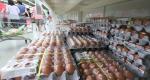 '살충제 달걀' 농식품부가 숨겼다? 4~5월에 이미 '비펜트린' 성분 검출