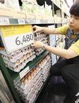 '에그포비아'(계란 공포)…산지 계란값 25% 폭락