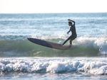 [호텔가] 노보텔 앰배서더 '다이내믹 서핑 패키지' 外
