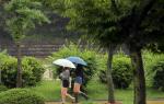 내일 날씨, 제주도 태풍 탈림 영향 차차 벗어나...전국 구름 많고 일부 지역 비