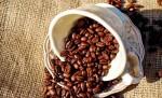 유명 커피전문점 4년간 '위생불량' 400건, 브랜드 보니 '손톱 혼입' 적발도