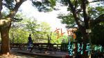 [부산스탑] 화명동에서 동·식물 만끽하기