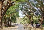 '오래된 미래 도시'를 찾아서 <34> 미얀마 응아빨리 해변미술관, 고난의 과거와 예술의 미래
