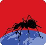 [도청도설] 독개미