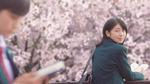['너의 췌장을 먹고 싶어' 리뷰] 시한부 소녀와 벚꽃 같은 사랑…한편의 아름다운 '철학적 우화'