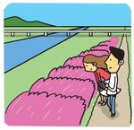 [도청도설] 핑크뮬리