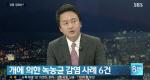 '최시원 반려견' 한일관 대표 사망원인 녹농균... 감염 경로는?