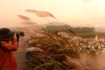 천천히 흐르는 시간 속 찬란하게 빛나는 물비늘·억새꽃