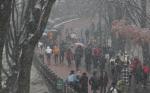 내일 날씨, 강원 일부 지역 '첫눈'...전국 비 전망