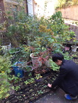 학생·교사 힘 모아 채소·꽃 가꾸고 이웃도 돕고…