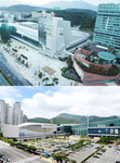 마이스산업 동남권 신성장 동력으로 육성