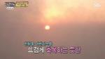 백년손님 토요일 예능 강자로 자리잡나?...시청률 8.8% 엄홍길 먹방 덕분?