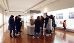 유엔평화문화특구 인기에…'박물관 투어' 횟수 배 늘려