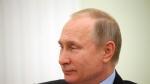 시리아 30일 휴전 대화 …푸틴,메르켈·마크롱과 합의