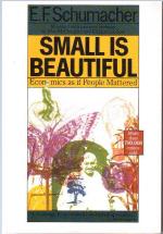 [김해창 교수의 에너지전환 이야기] <36>슈마허의 '적정기술' - 작은 것이 아름답다
