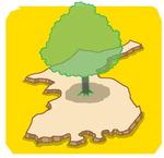 [도청도설] 평화나무 통일나무