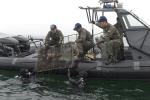 제23회 바다의 날...해군장병 1000여 명 해양정화활동 펼쳐