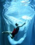 [포토에세이] 물속에서 산책해요