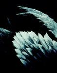 [아침의 갤러리] 인공의 날개-노재환 作